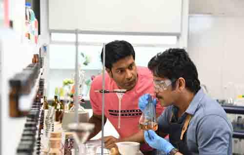 Movie Details Manmadhudu 2